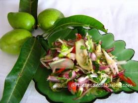 mangocele cev (4)